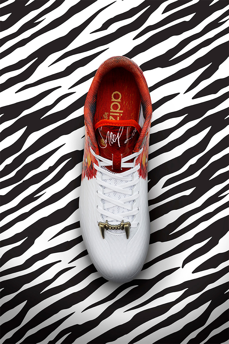 Top view of the adidas snoop lion shoe