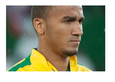 Danilo Luiz da Silva - Brazil National Team - Year 2014