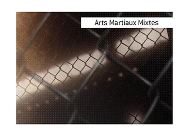 Parier sur les arts martiaux mixtes peut ajouter de lexcitation a une soiree. Faites toujours preuve de prudence et de prudence lorsque vous placez des paris.