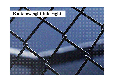 There is a UFC title fight coming up in the bantamweight division.  Bet on it!
