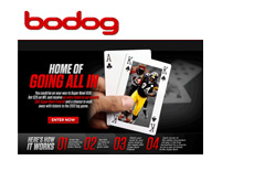 Bodog promotion - Home of Goin All In - 5K Super Bowl Freeroll