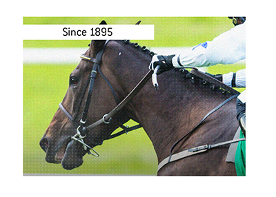 Australian horse race - Chelmsford Stakes - has been taking place annualy since 1895.