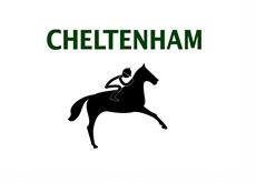 Cheltenham Race