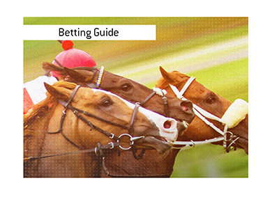 The Kings horse betting guide.  Difference between two popular bets.