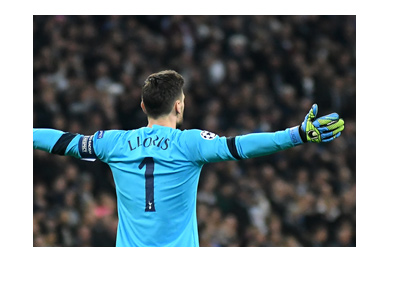 Hugo Lloris with arms spread out in celebration.  Wearing light blue kit.