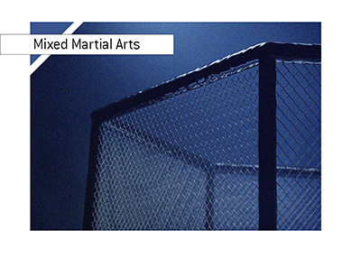 The MMA cage lit up in reflector lights.  The background is blue.  The fight is on.