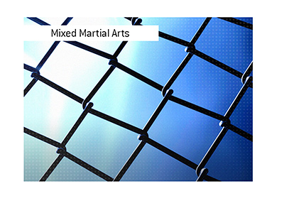 Mixed Martial Arts - The octagon mesh wire with spotlights in the background.