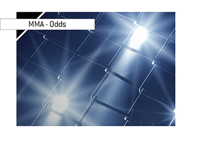 Mixed Martial Arts - MMA - Odds of winning - Photo of cage mesh from close up.  Lights on.  Bet on it!