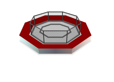 The MMA octagon - Illustration - Red is the dominant colour.