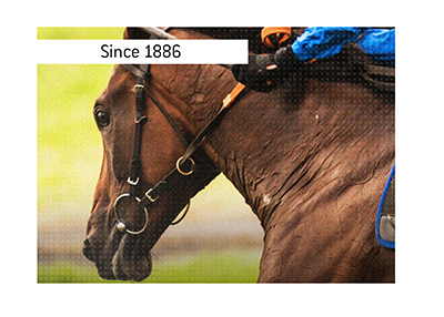 Since 1886 the Tramway Stakes horse race has been taking place in Australia.  Bet on it!