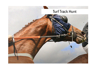 A popular turf track hunt horserace takes place annually in December in the Republic of Ireland.  If you bet on it, do so with financial prudence.