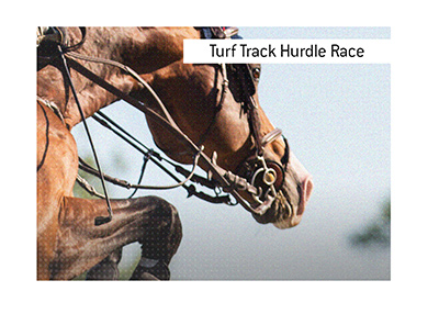 The Marsh Hurdle is a turf track hurdle race open to all horses four years or older.