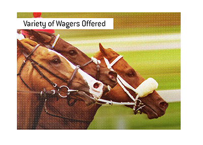 A wide variety of horse racing wagers are offered at the track and online.