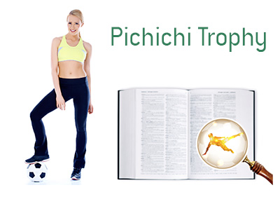 Definition and Meaning of Pichichi Trophy - Football Game Dictionary
