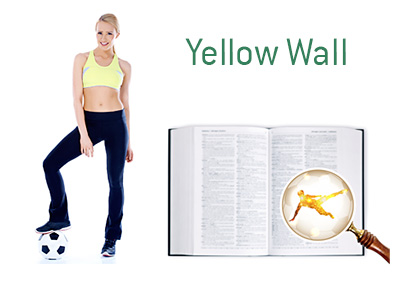 Definition and Meaning of Yellow Wall - Football Game Dictionary