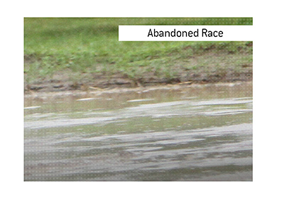 The meaning of Abandoned Race when it comes to horse racing.  What is it?  The King explains.