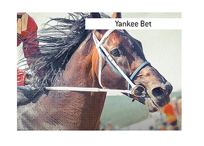 The meaning of the popular term Yankee Bet is explained in this article.  A horse photographed in the middle of a tense race is in photo.