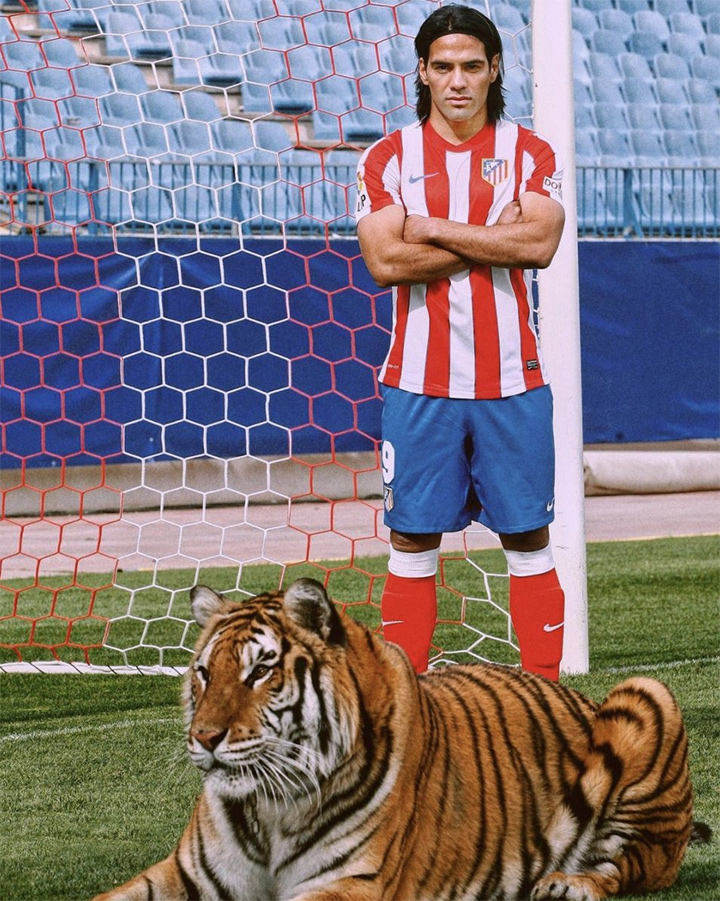 And here is our Radamel Falcao photographed next to a tiger.  On the football pitch.