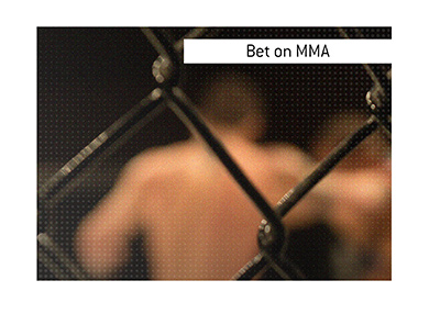 Bet on the sports of Mixed Martial Arts.