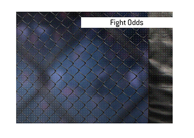 Bet on the upcoming MMA event.  Here are the latest odds.