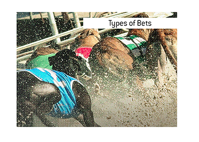The most common bet types when it comes to Greyhound racing are...