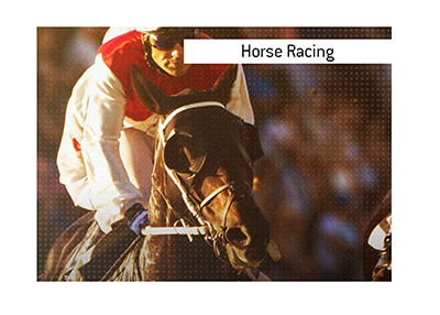 The King lays out the best way to place wagers on horses online.  Where is the top place to go?