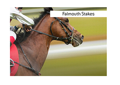 Where is the best place to bet on Falmouth Stakes horse race?  The King explains.
